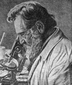 Mechnikov1